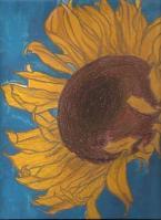 my-sunflower.jpg
