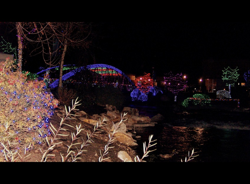 The Beautiful Christmas Lights.
