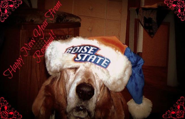 Rosie BSU hat 3